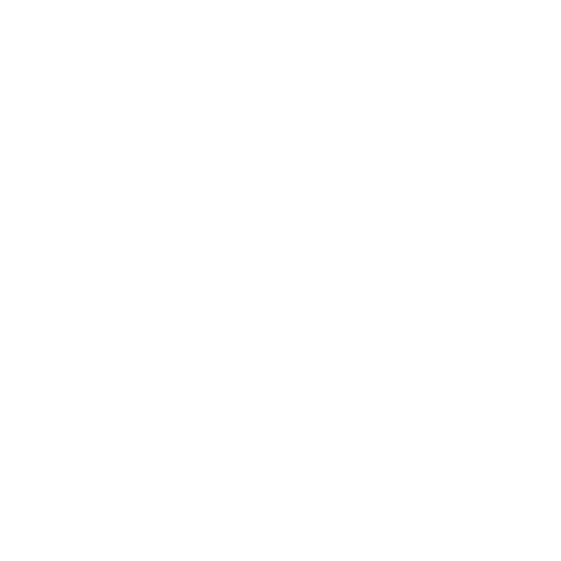 Ali Enterprises Inc